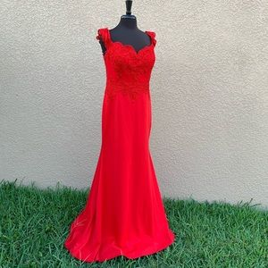 ❤️ANNY LEE❤️  Formal Gown (XXL/16)